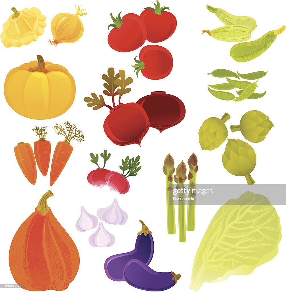 Farmer's Vegetables : Vector Art