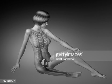 Female figure with skeleton and body parts visible : Stock Illustration
