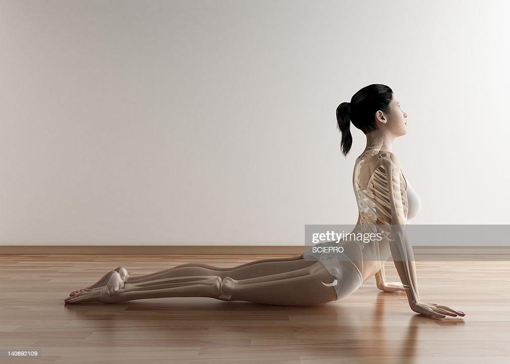 Female stretching, artwork : Stock Illustration