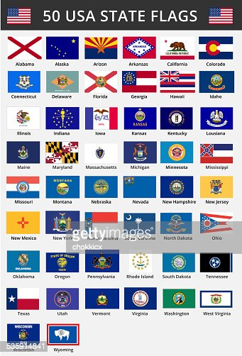 Fifty of USA States Flags : Stock Illustration