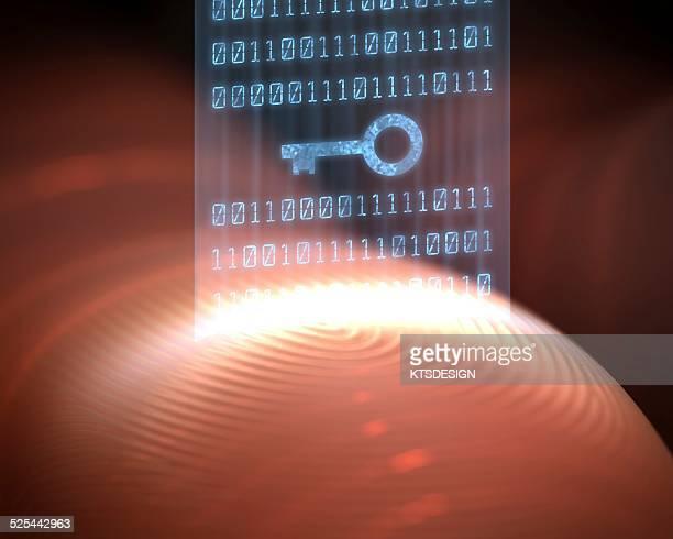 Fingerprint scanner, artwork