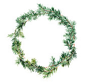 Spruce wreath isolated, Watercolor hand made design