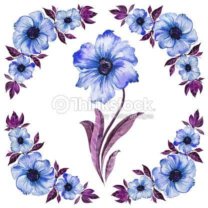 Ilustración Floral Hermosas Flores Con Hojas De Color Púrpura Patrón ...
