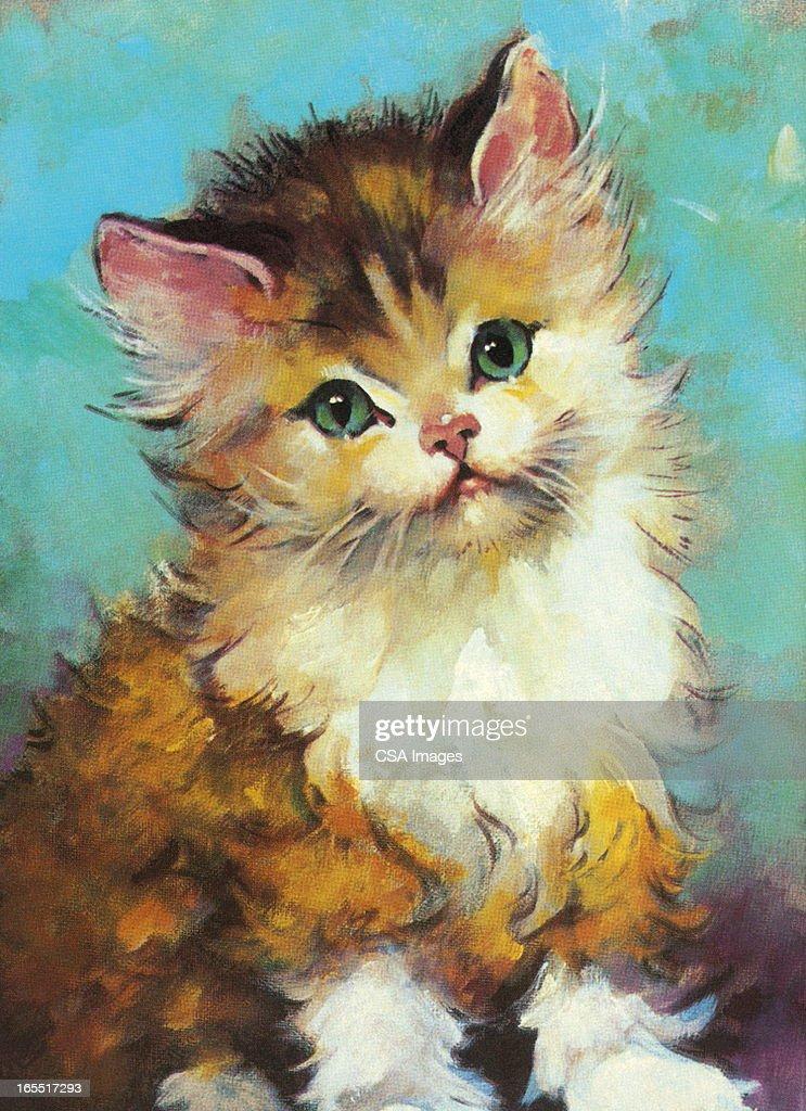 Fluffy Cat : Stock Illustration