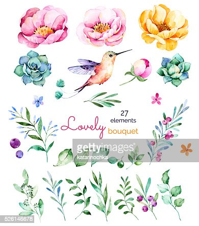 Foral colecção com flores, rosas, folhas e ramos, bagas, succulents : Ilustração de stock