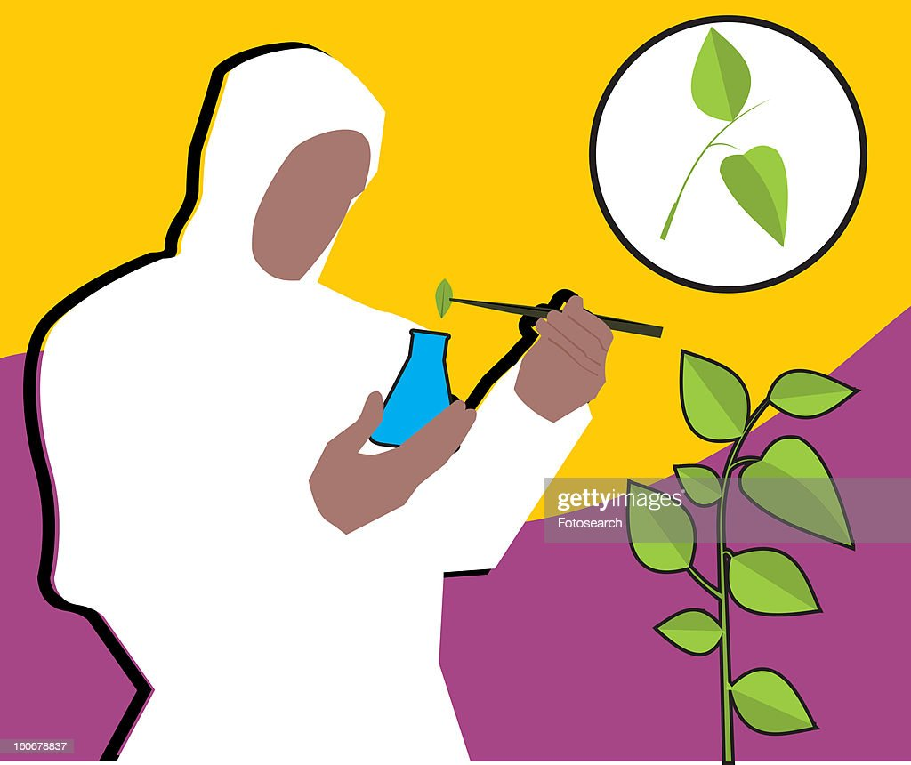 Front view of a scientist putting leaf into flask : Stock Illustration