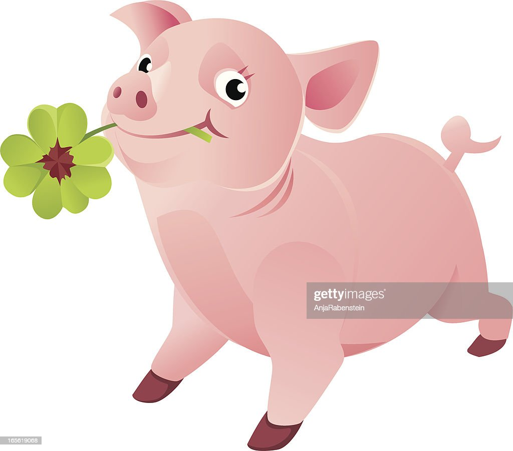 good luck pig with a four leaf clover vector art getty images