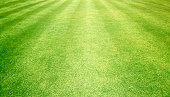 Football field green grass pattern textured background.