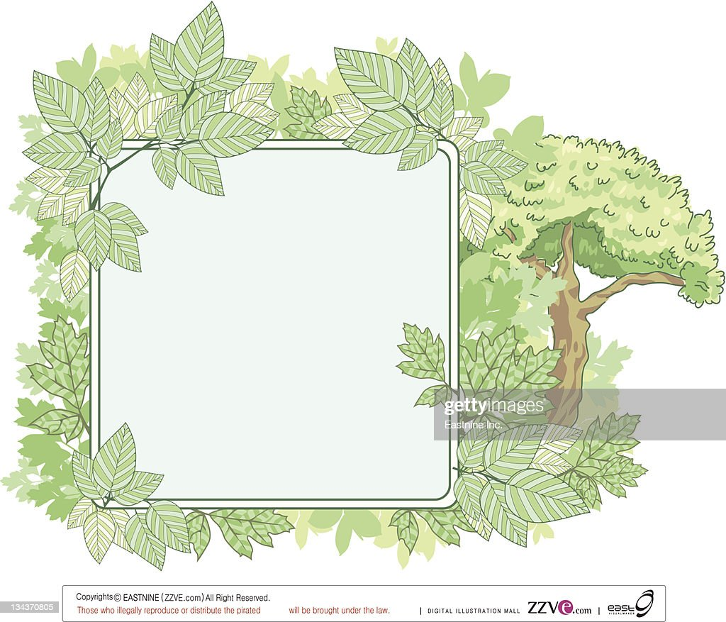 Green nature placard with leaves : Vector Art