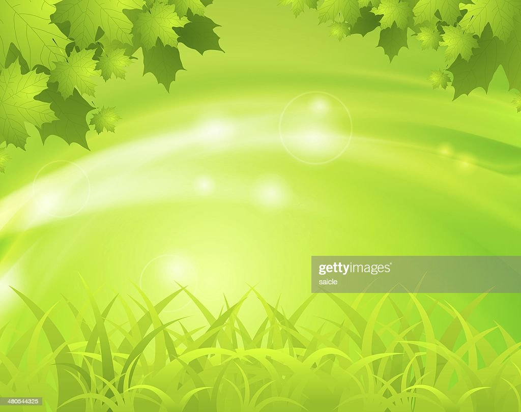Green spring background : Stock Illustration