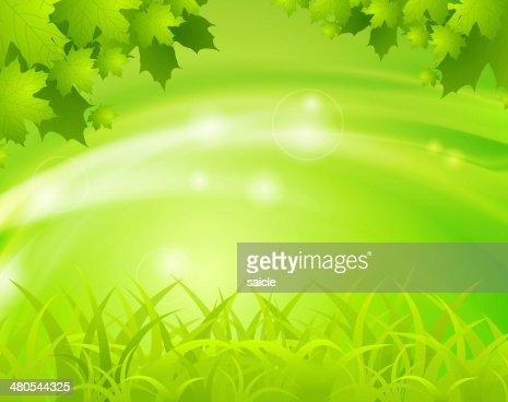 Resorte verde fondo : Ilustración de stock