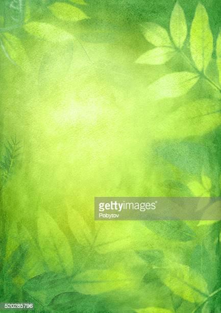 Printemps vert Fond aquarelle