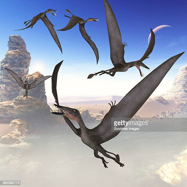 A group of Dorygnathus predatory reptiles fly above a Jurassic landscape of Europe.