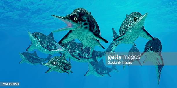 A group of Ichthyosaurs swimming in prehistoric waters.