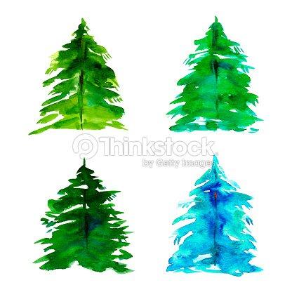 Disegno A Mano Ad Acquerello Abete Albero Di Natale Cartaset Di