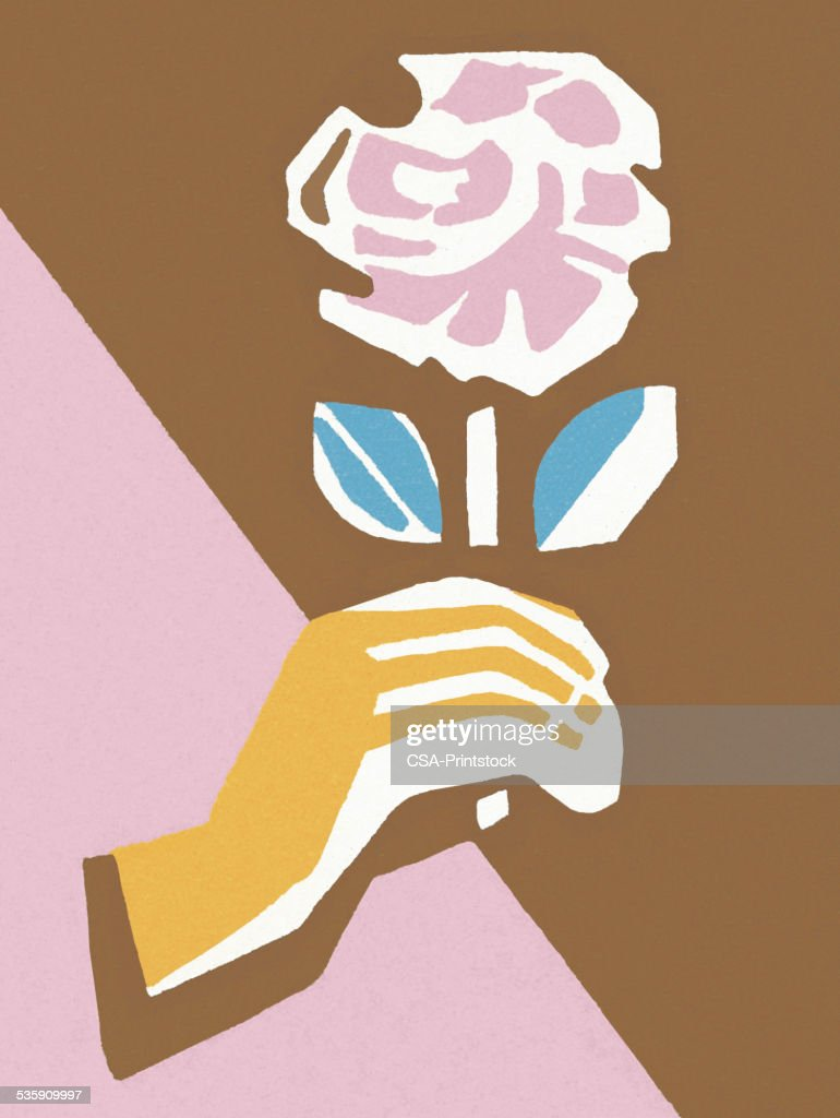 Hand Holding a Pink Rose : Stock Illustration