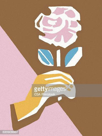 Mão segurando uma Rosa-de-rosa : Ilustração de stock