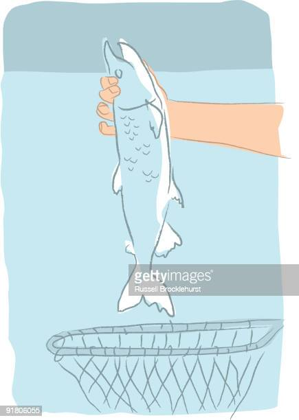 A hand taking a fish out of a net