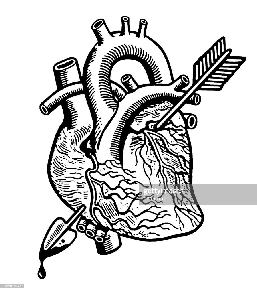 Heart With Arrow : Stock Illustration