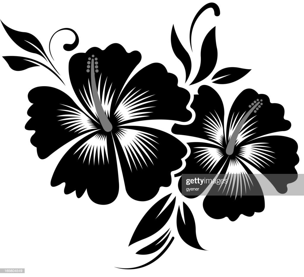 Image Gallery hibiscus silhouette