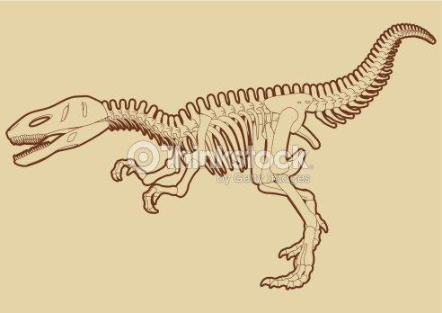 Altamente Detallada Paso Largo Tyrannosaur Esqueleto Vector Arte ...