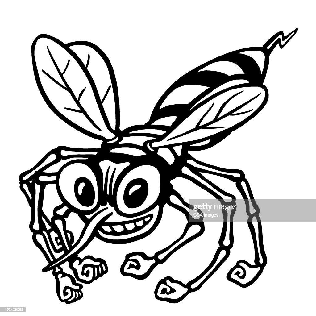 Hornet : Stock Illustration