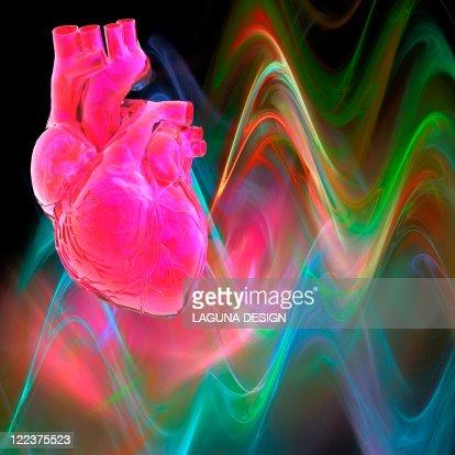 Human heart, artwork : Stock Illustration