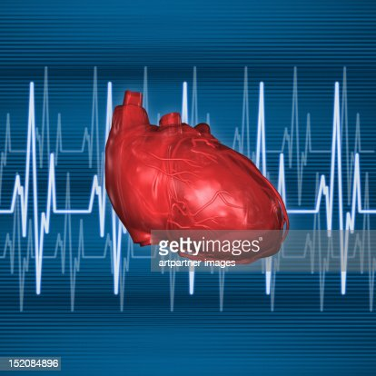 Human Heart With Heart Rate Lines Stock Illustration ...