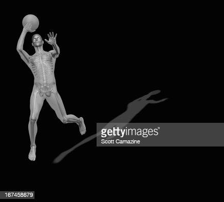 Human skeleton playing basketball : Stock Illustration