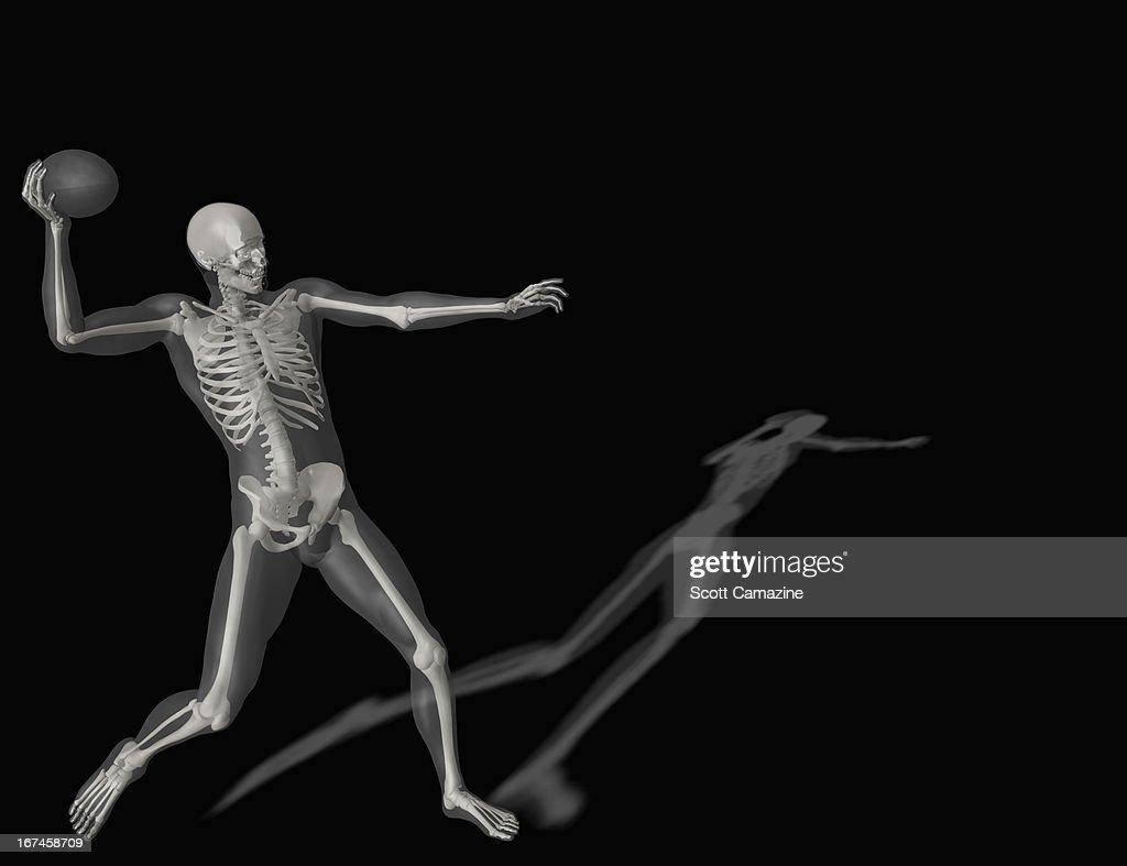 Human skeleton throwing ball : Stock Illustration