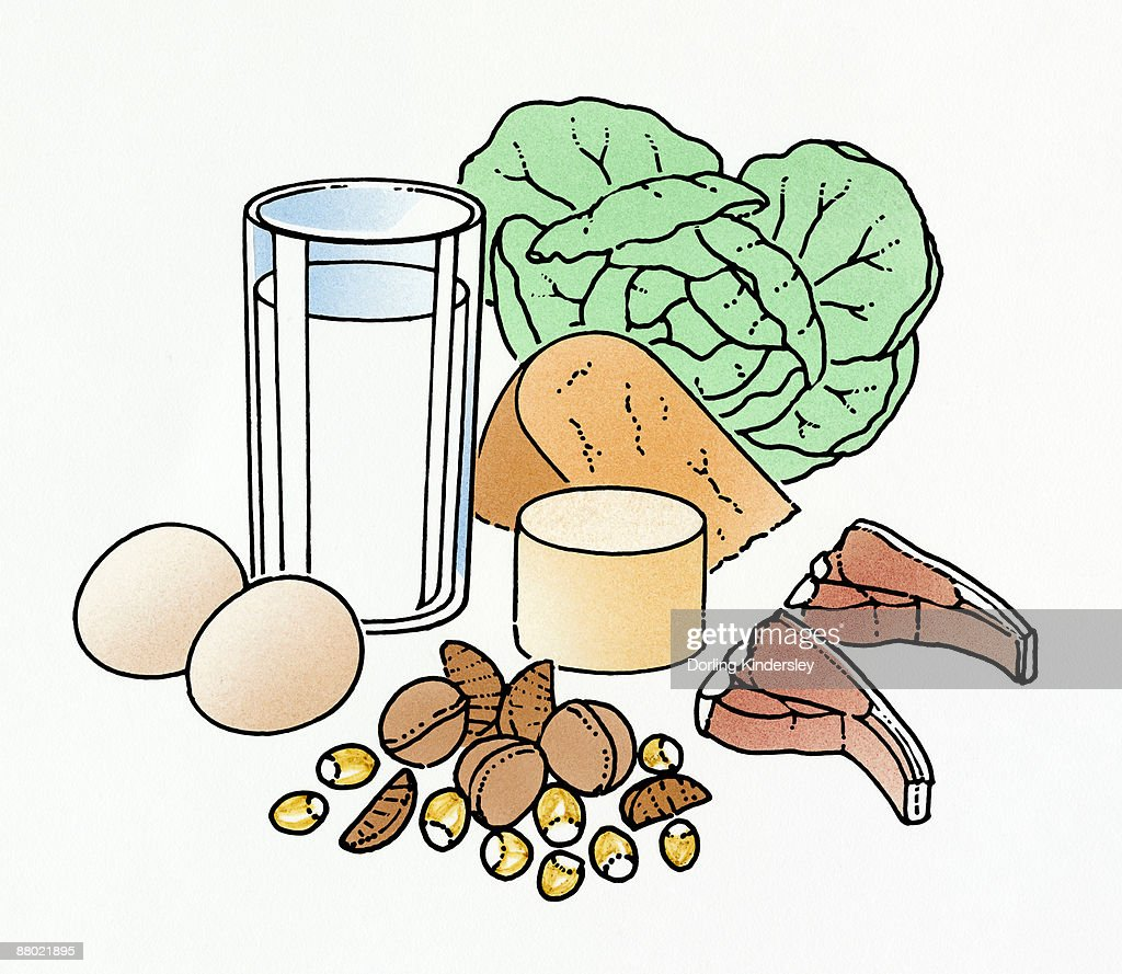 Illustration ingredients for a balanced diet : Stock Illustration