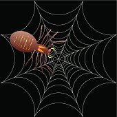 illustration of a spooky spider for halloween or as a background