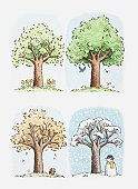 Illustration of a tree through the season