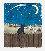 Illustration of cat on a fence looking at night sky above city