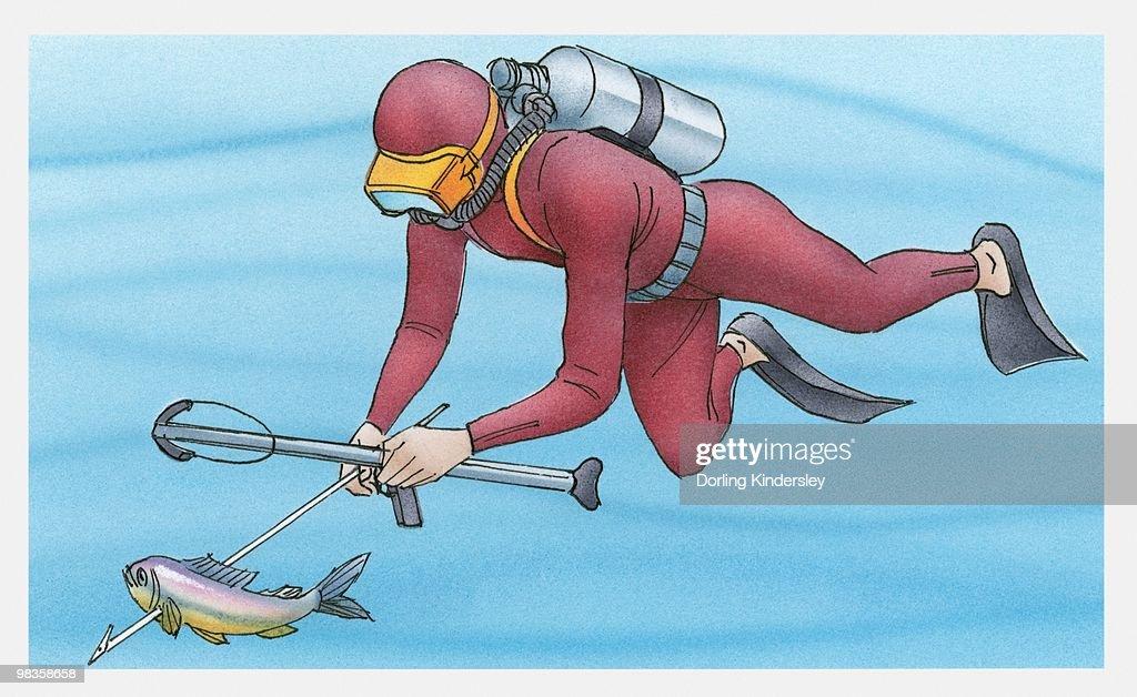 Illustration of diver spear fishing underwater : Stock Illustration