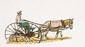 Illustration of farmer ploughing field near Burdur using traditional horsedrawn plough