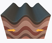Illustration of folds forming in the Earth's crust