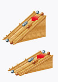 Illustration of Galileo's inclined-plane experiment, involving steep incline and shallow incline, sh