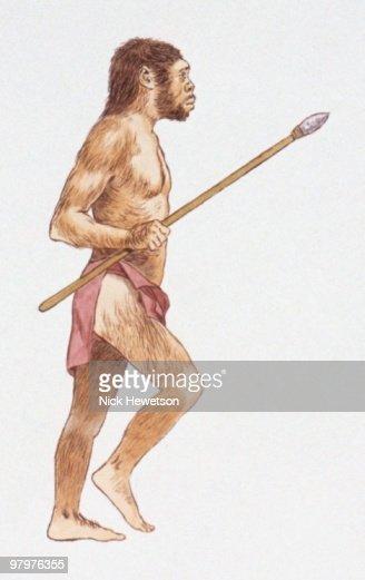 Illustration of Homo erectus holding spear : Stock Illustration