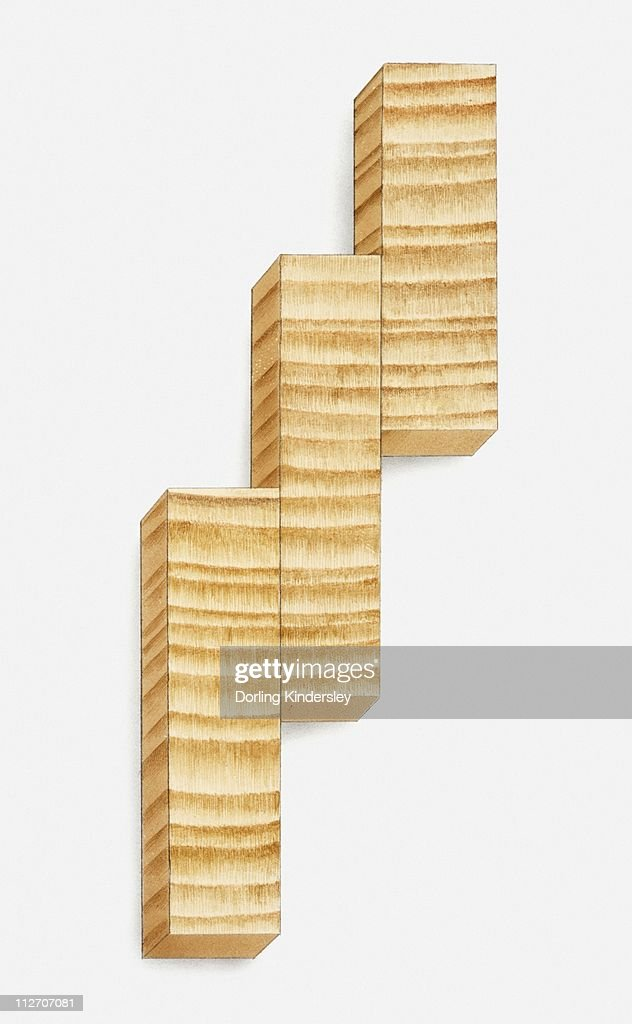 Illustration of sections from a tree trunk showing tree rings : Stock Illustration
