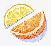Illustration of slices of orange and lemon