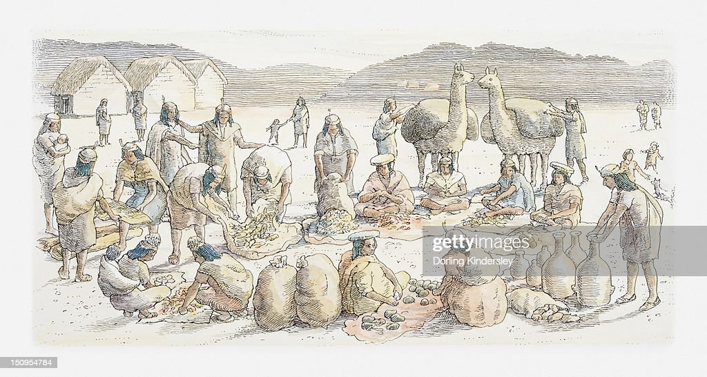 Illustration of typical Andean market scene : Stock Illustration