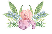 iris flower Medici Prince watercolor illustration with twigs for decoration