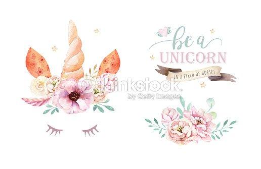 Aislado Clipart Unicornio Acuarela Lindo Con Flores Dibujo De ...
