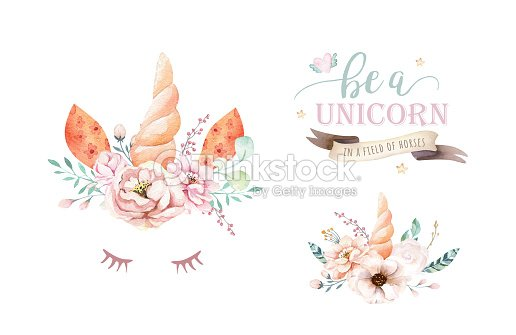 Aislado Clipart Unicornio Acuarela Lindo Con Flores Dibujo De