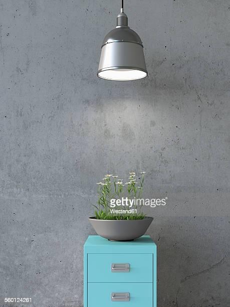 Interieur de maison en beton photos et images de for Jardiniere interieur