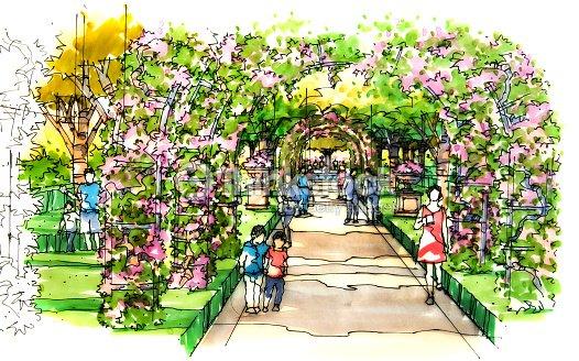 jardin paysager croquis s rie 22 illustration thinkstock. Black Bedroom Furniture Sets. Home Design Ideas