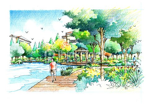 Landscape garden sketch series 25 stock illustration for Garden design sketches