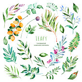 Leafy collection.22 Handpainted watercolor floral elements.Watercolor leaves, branches,berries,foliage.Perfect for you unique projects,template,wedding invitations,greeting cards,graphic,quotes,poster