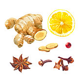 Watercolor illustration of lemon, ginger root, badiam, star anise and cloves isolated on white background with clipping paths included